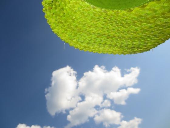 Green hat blue sky